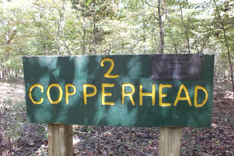 Copperhead2.JPG