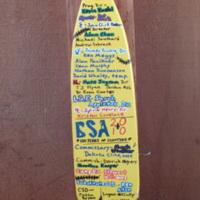 2010 Cherokee Staff Paddle (Close-UP).JPG