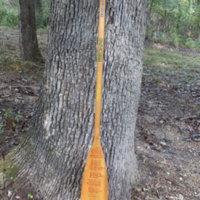 1988 Osage Staff Paddle
