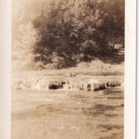 http://www.kiakimamuseum.org/plugins/Dropbox/files/1943 - Kamp Kiwani - Falls (2) [MS462].tif