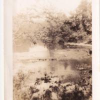 http://www.kiakimamuseum.org/plugins/Dropbox/files/1943 - Kamp Kiwani - Falls [MS462].tif