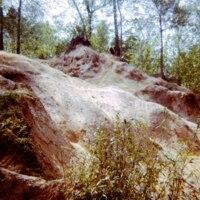 http://kiakimamuseum.org/plugins/Dropbox/files/1974 Camp Currier Suicide Hill.jpg