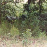 http://www.kiakimamuseum.org/plugins/Dropbox/files/1988 - OKK Cabins 2.jpg